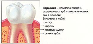 Заболевания пародонта, их влияние на состояние здоровья человека, способы лечения